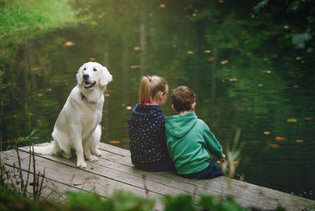 Hund und Kinder am See